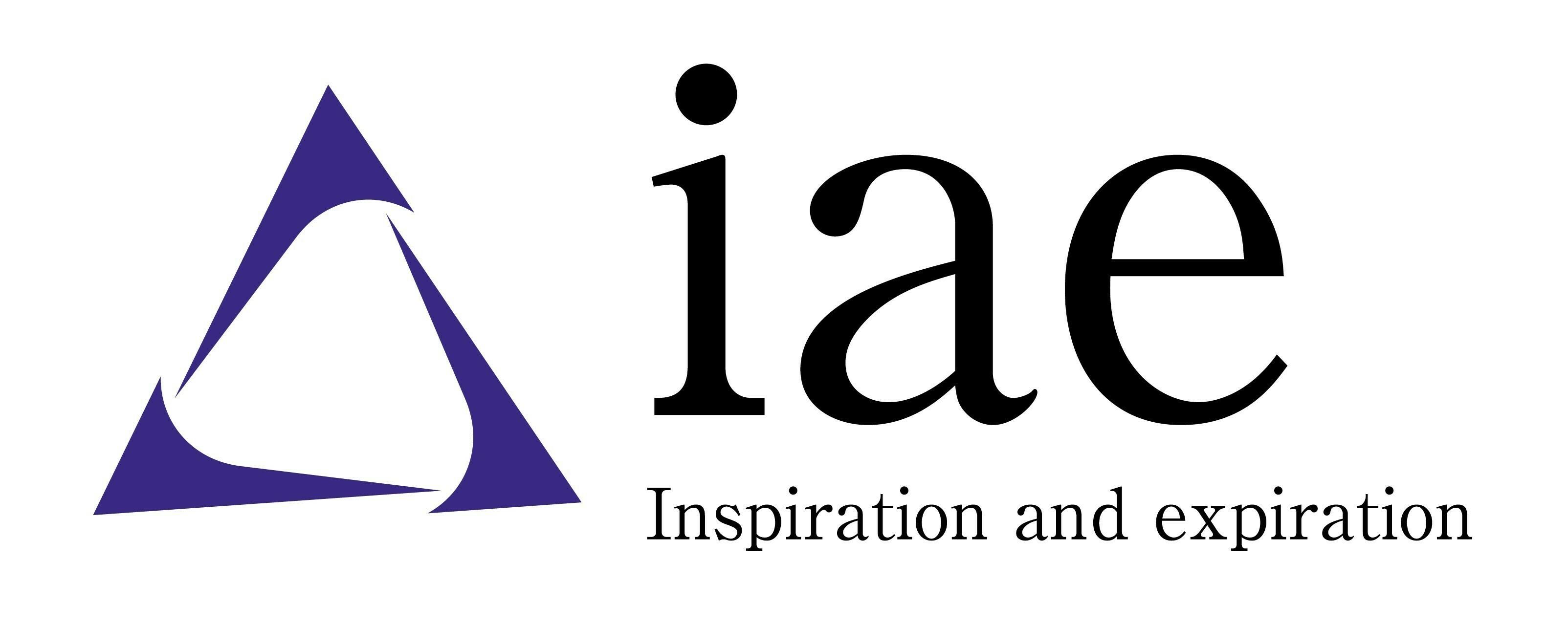 IAE Inc.