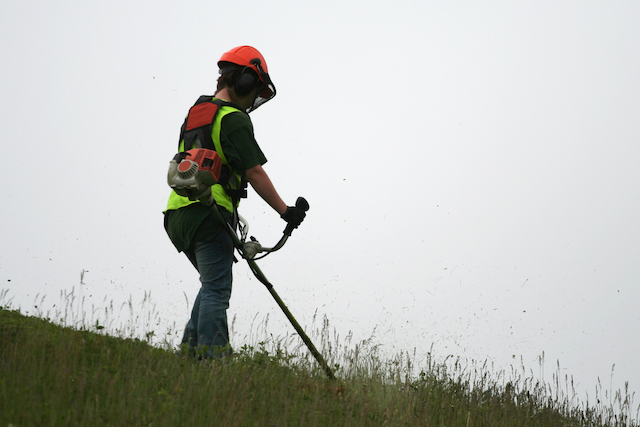 【Aichi】Grass Cutting Job on the Riverbed
