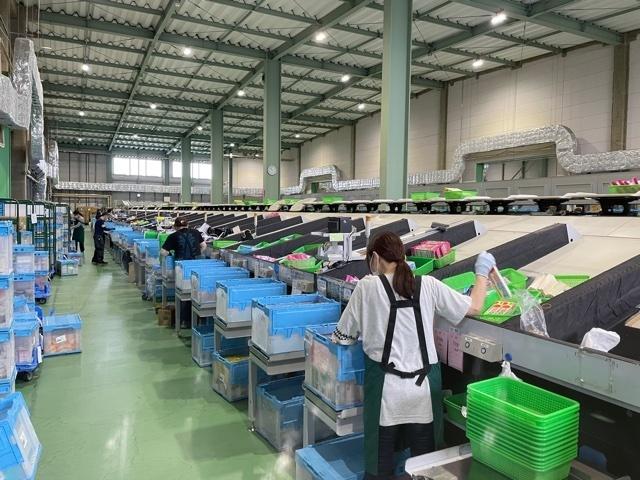 【Shizuoka】Packing / Sorting / Loading Items at Warehouse